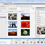 Picasa App for PC Windows 10 Last Version