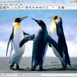 IrfanView (32-bit) App for PC Windows 10 Last Version