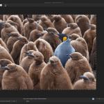 ACDSee Photo Editor App for PC Windows 10 Last Version