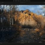 Capture One App for PC Windows 10 Last Version